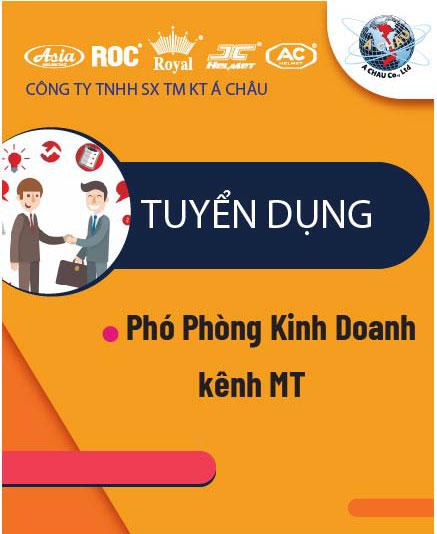 PHÓ PHÒNG KINH DOANH KÊNH MT
